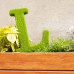 Moss L